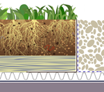 Sponge Roof (mineral wool / retention) green roof construction specfication with gravel