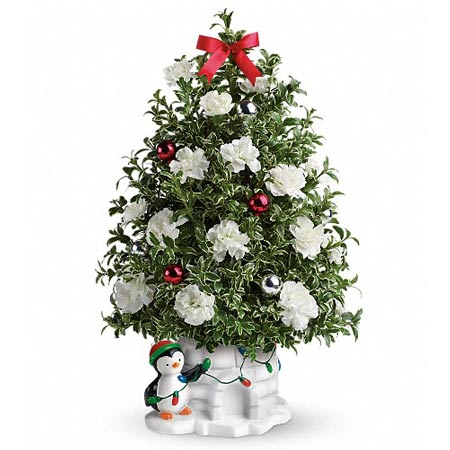 White carnations penguins mini live Christmas tree deliveries