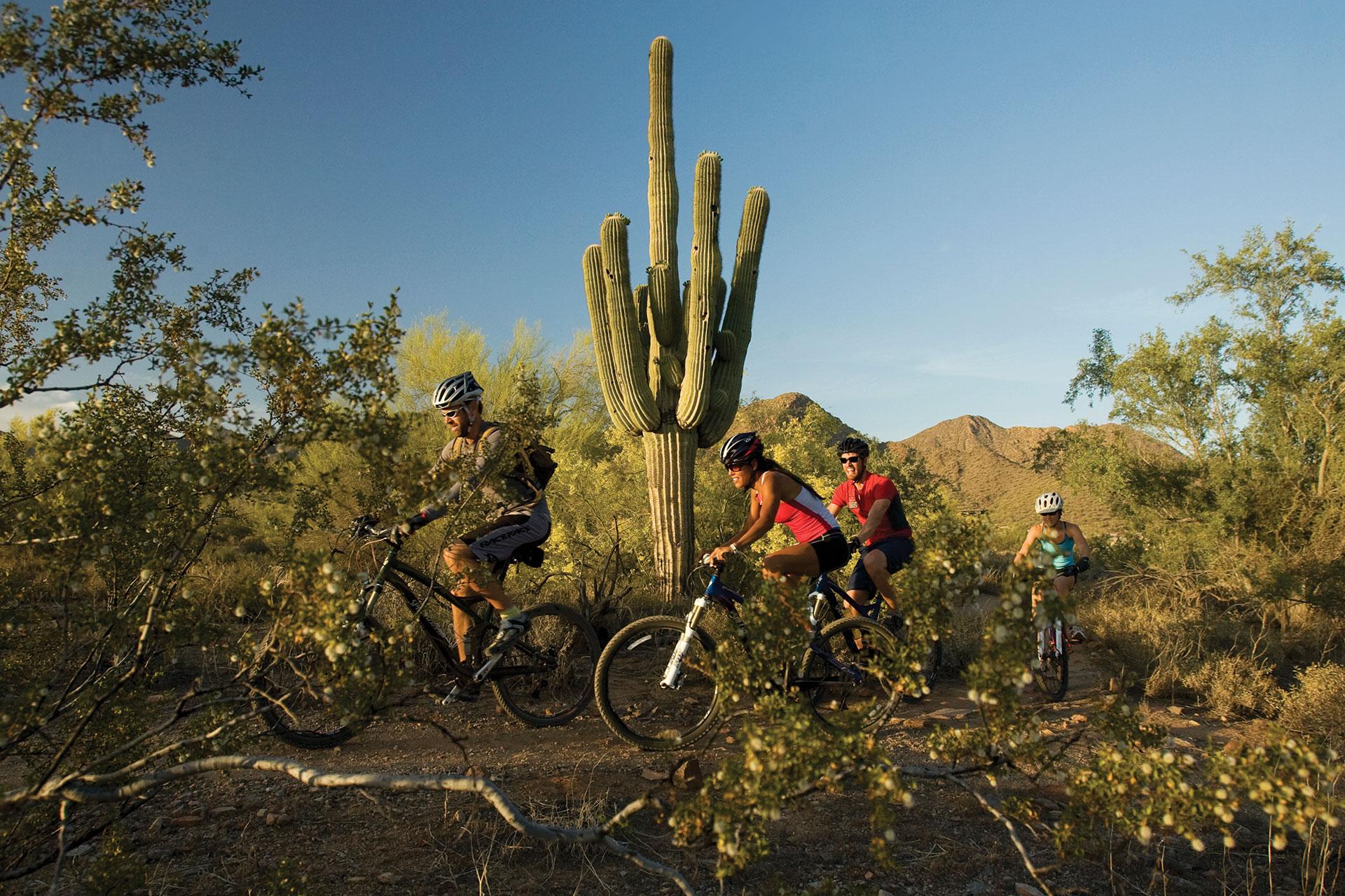 McDowell Sonoran Preserve in Phoenix