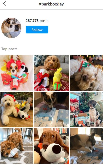 how to choose hashtags for instagram