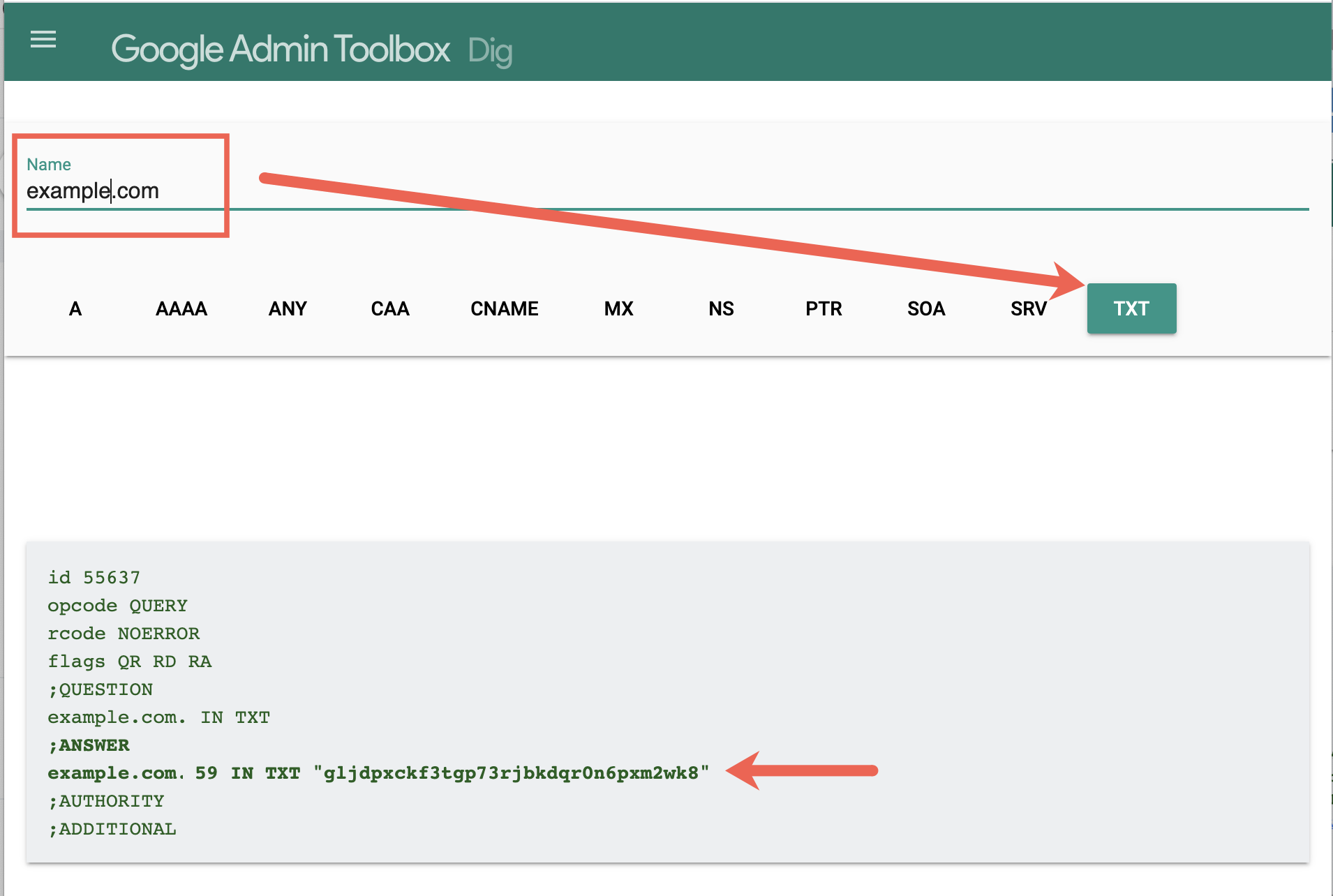 Sample Google DNS TXT lookup