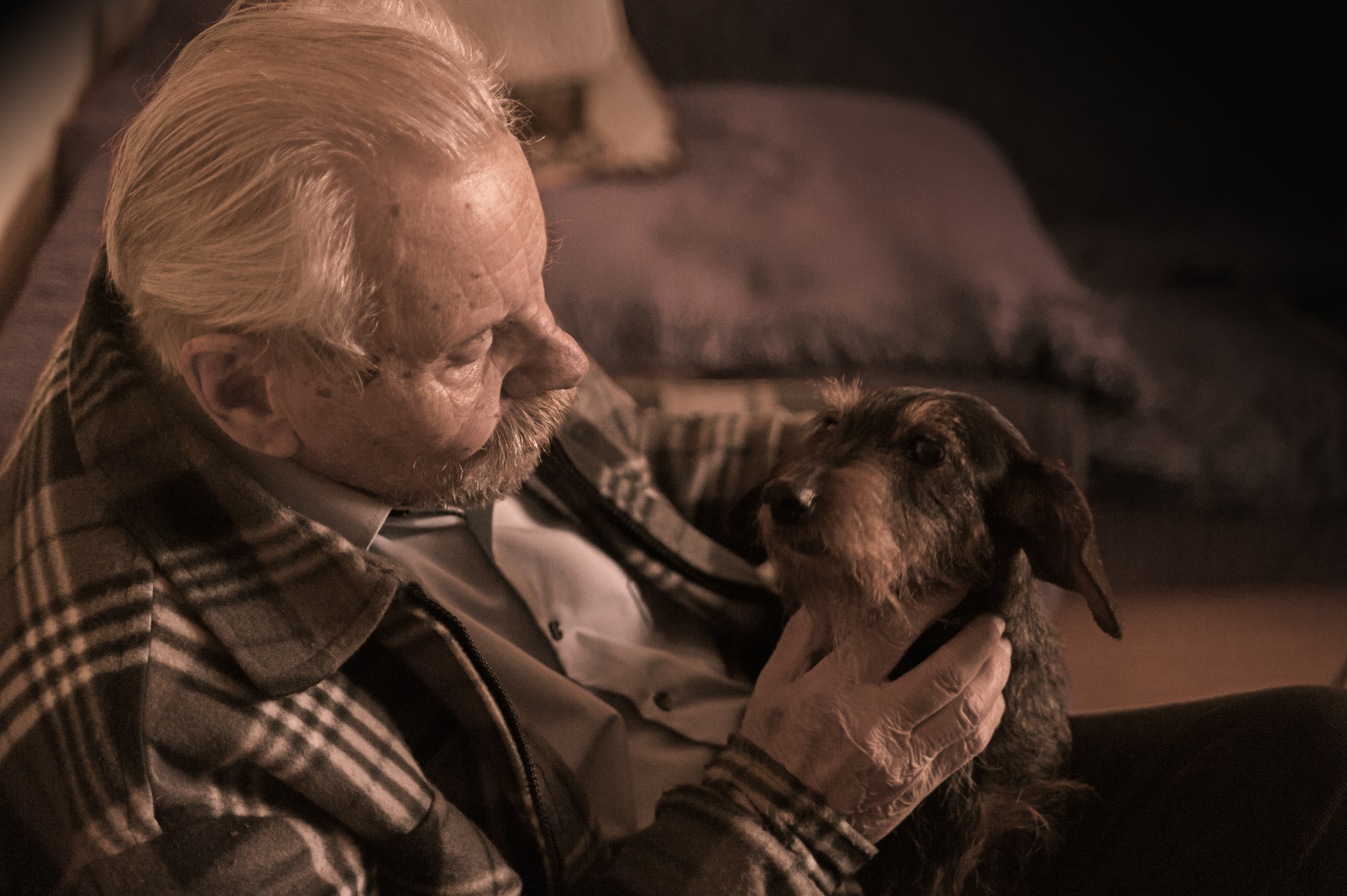 Elderly man with dog-CareWindow blog - Pets as companions for Seniors Pros and Cons
