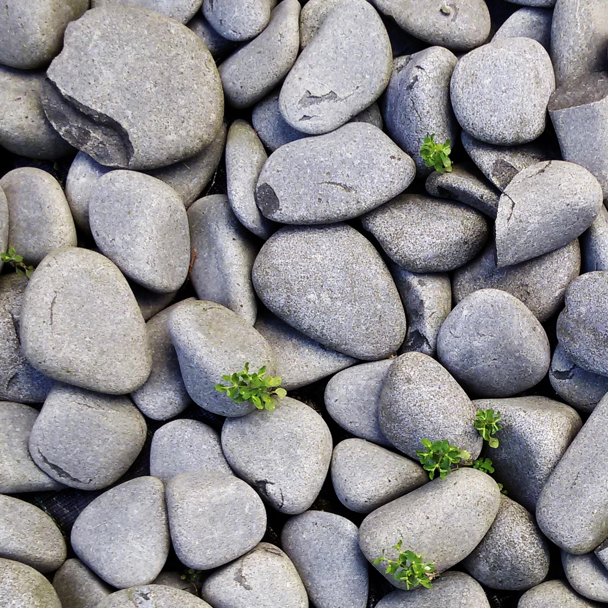 pebbles / stones