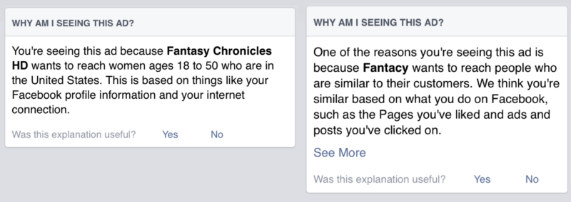 Fantasy Chronicles targeted audiences
