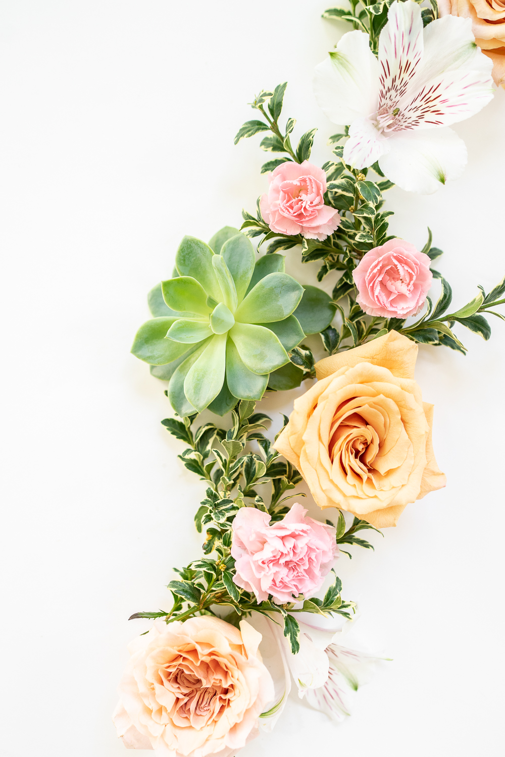 Which Flowers Mean Sympathy?