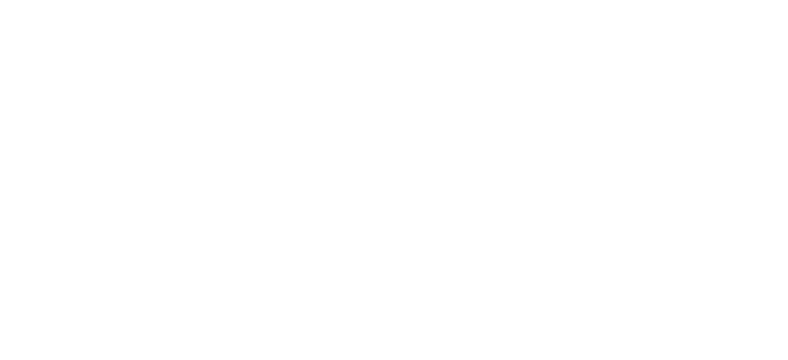 Alpine Foods logo