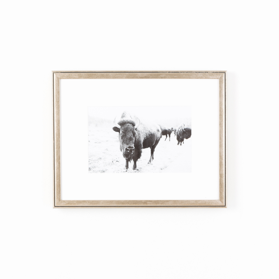 Ventura product photo, metallic warm silver frame