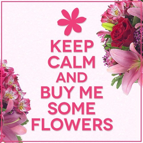 funny flower quotes.jpg