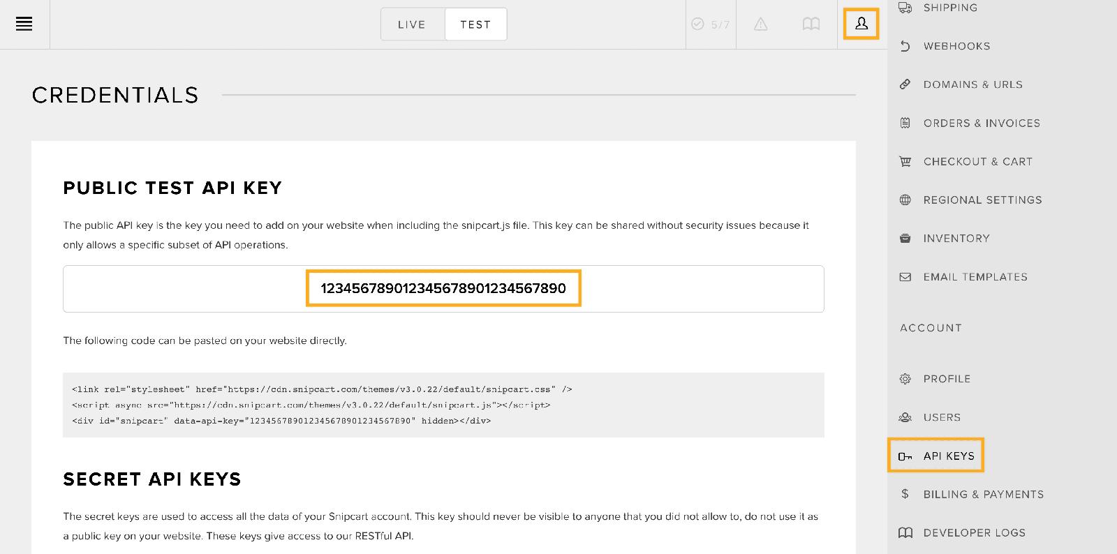 Screenshot: Snipcart API key