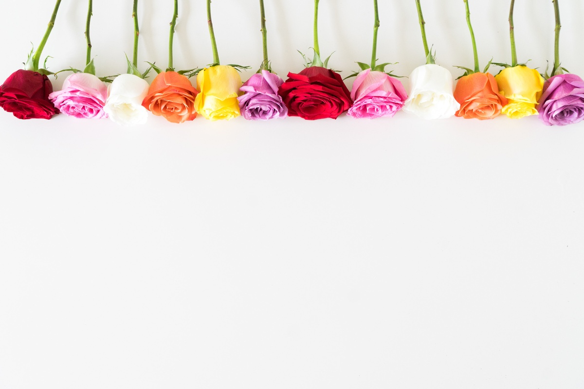 Why Are Roses Used on Valentine's Day?