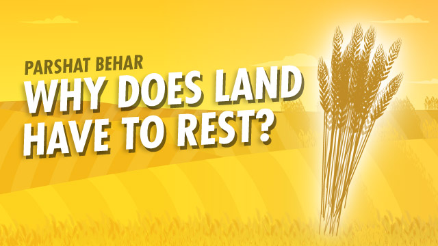 Parshat Behar | Why Does Land Have To Rest?