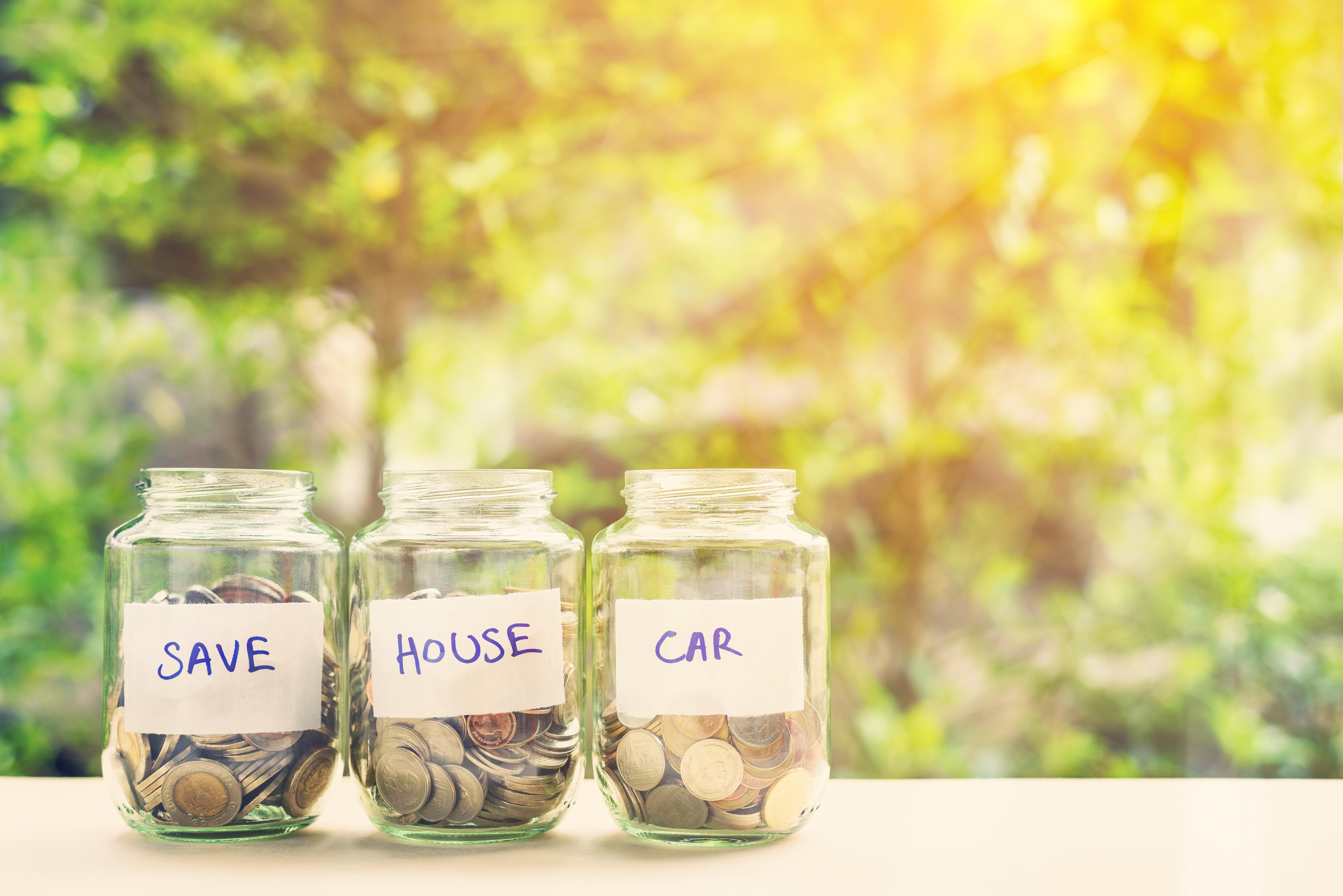 Balanced Borrowing and Saving