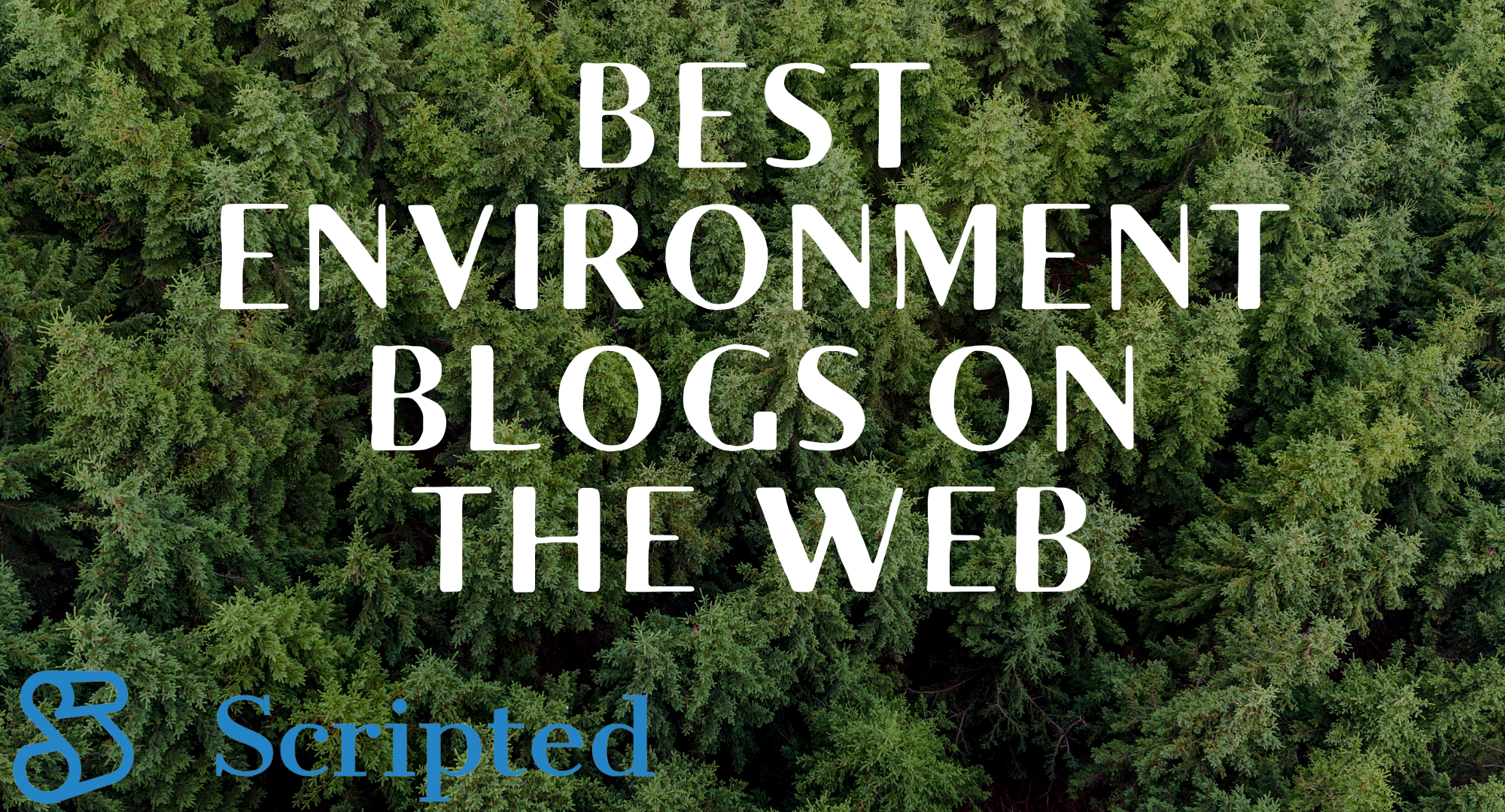 The 16 Best Environmental Blogs On The Web