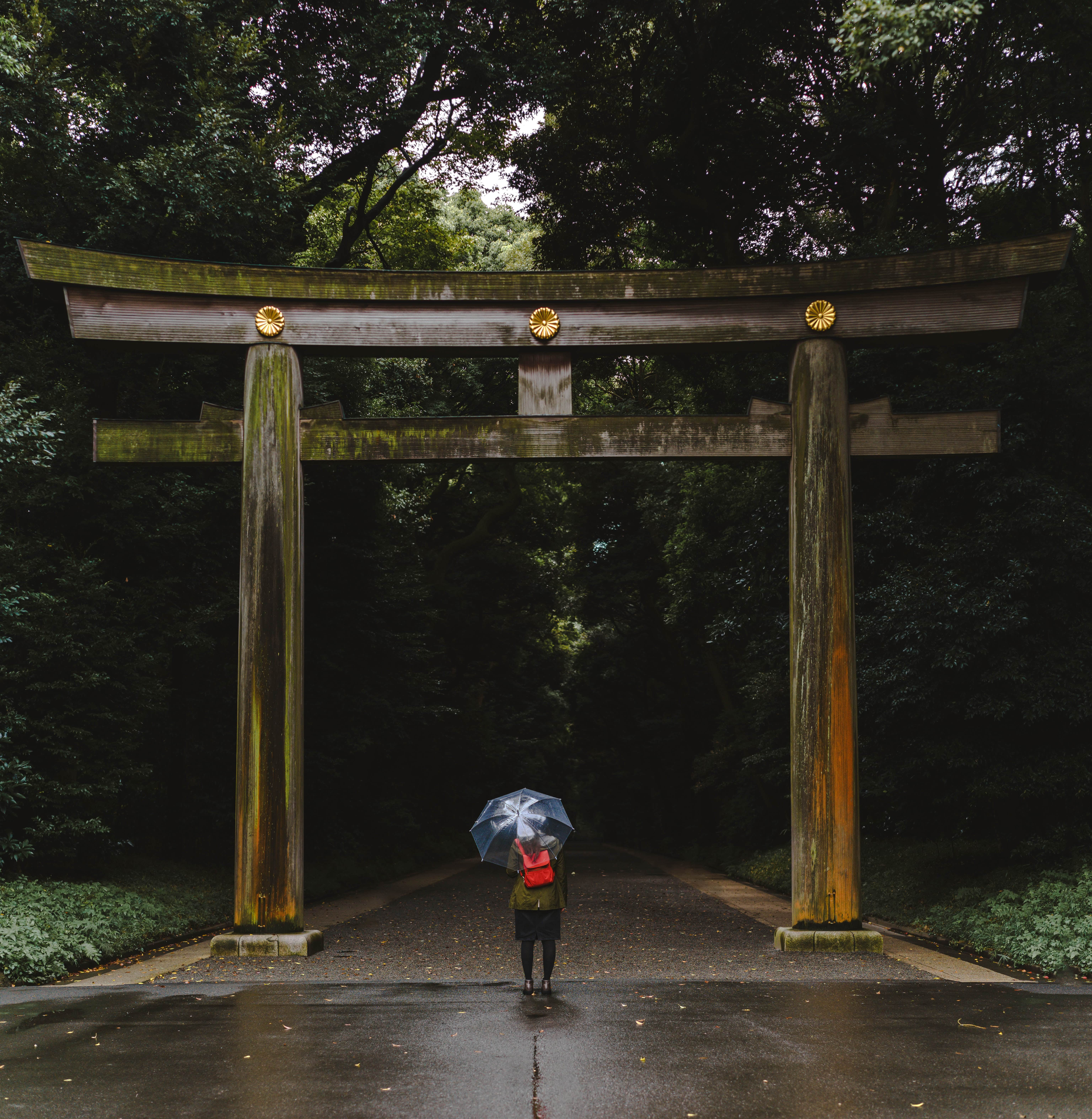 Visiting Meiji Shrine is one of the top things to do in Tokyo