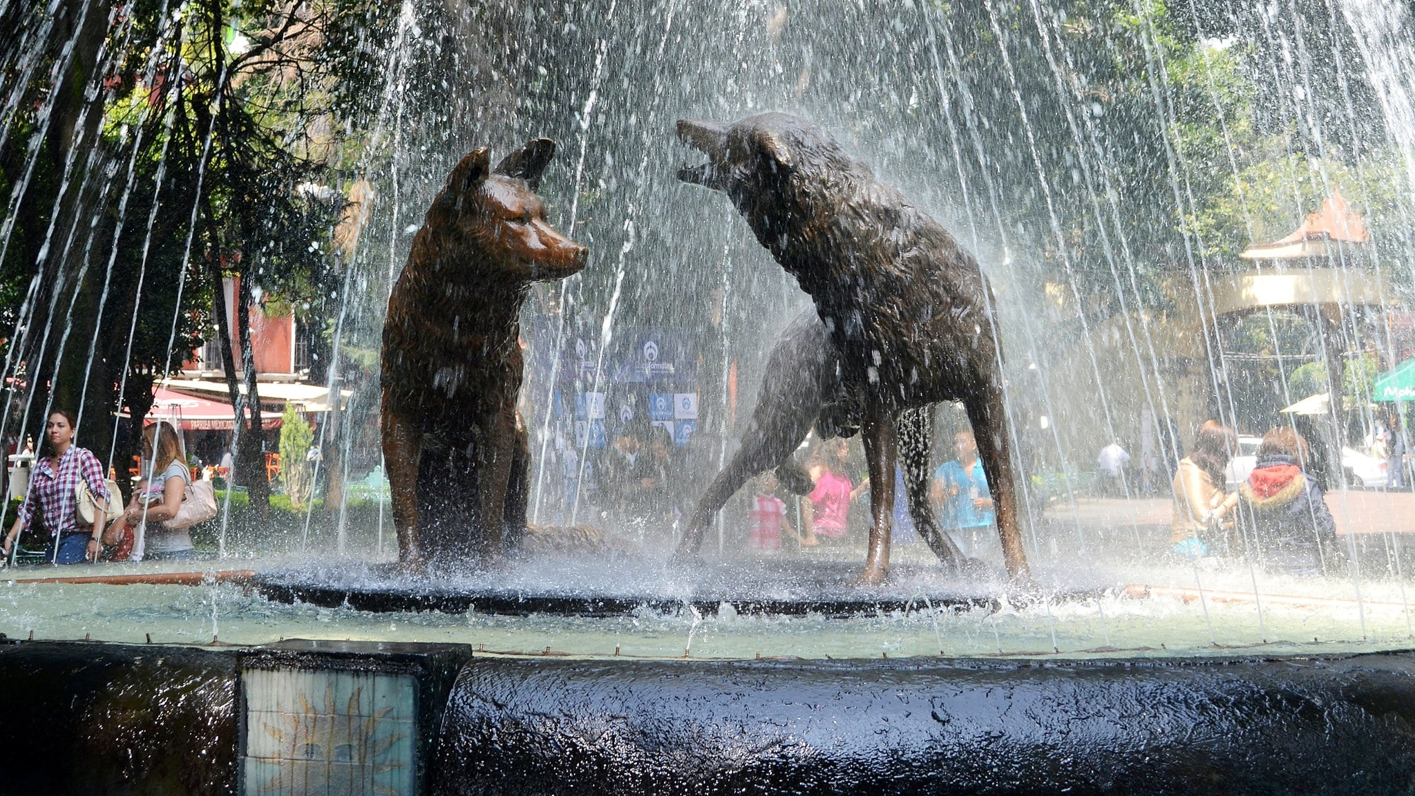 Coyoacan is one of the best neighborhoods in Mexico City