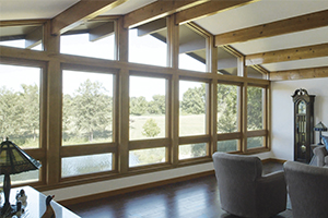 Specialty shaped window from Infinity from Marvin