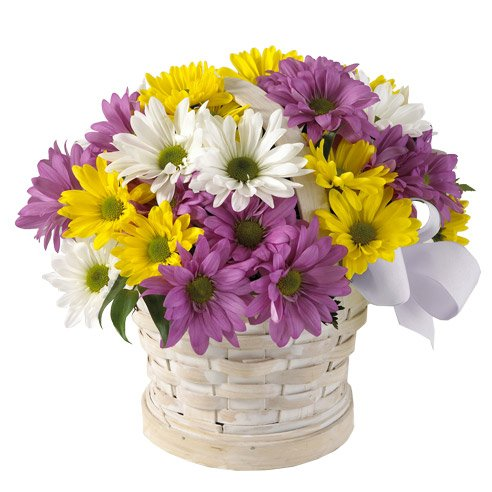 Purple Easter flowers delivery mixed daisy bouquet