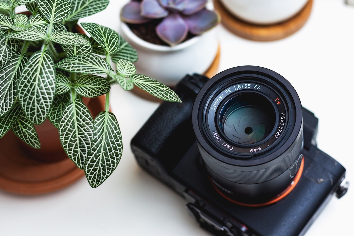 Image of Why It's Crucial to Take Photos When You Move Into a New Rental