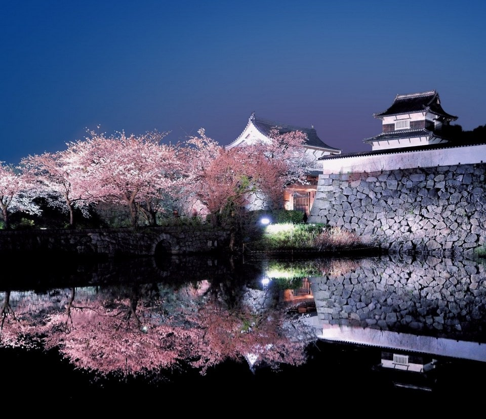 Seeing the Fukuoka castle is one of the Things to do in Fukuoka Japan