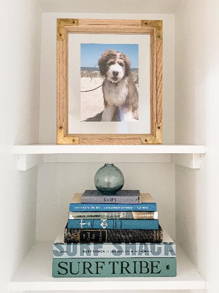 photo of dog framed on bookshelf