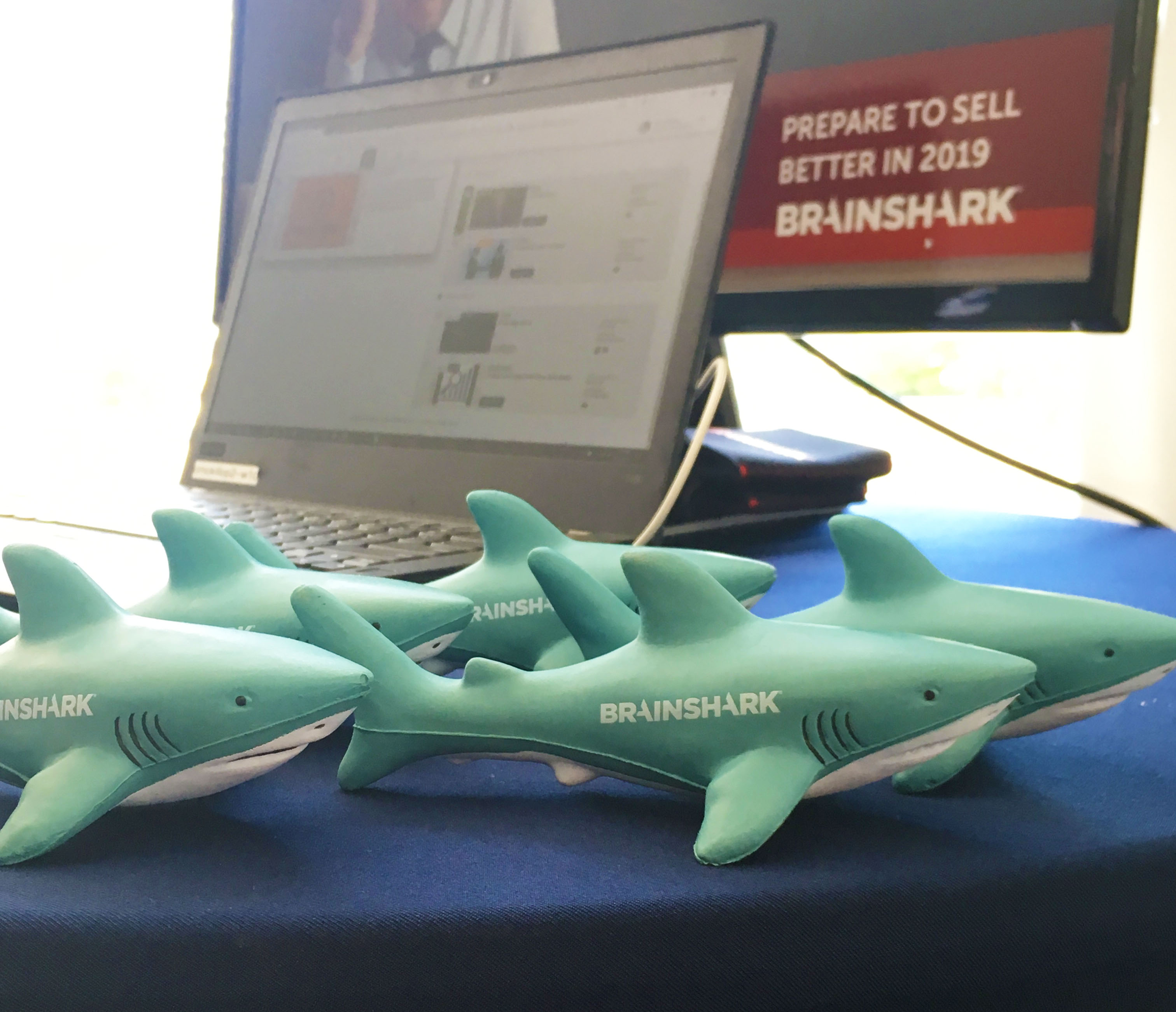 Brainshark Marketing Swag