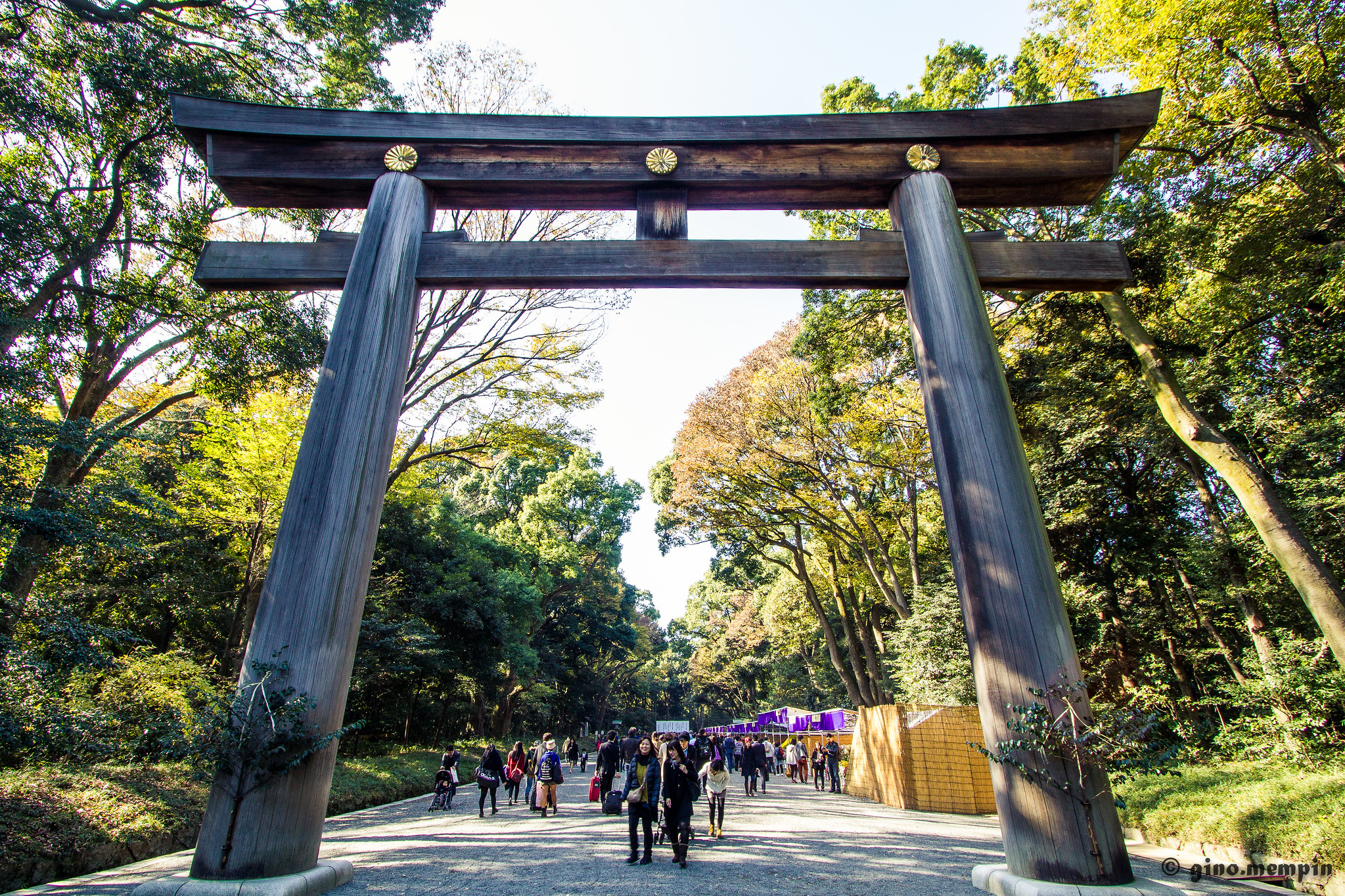 Checking out Japan's shrines and temples is a cool thing to do in Tokyo