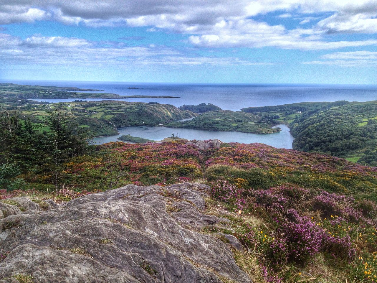 Kayaking at Lough Hyne is one of the best things to do in Cork