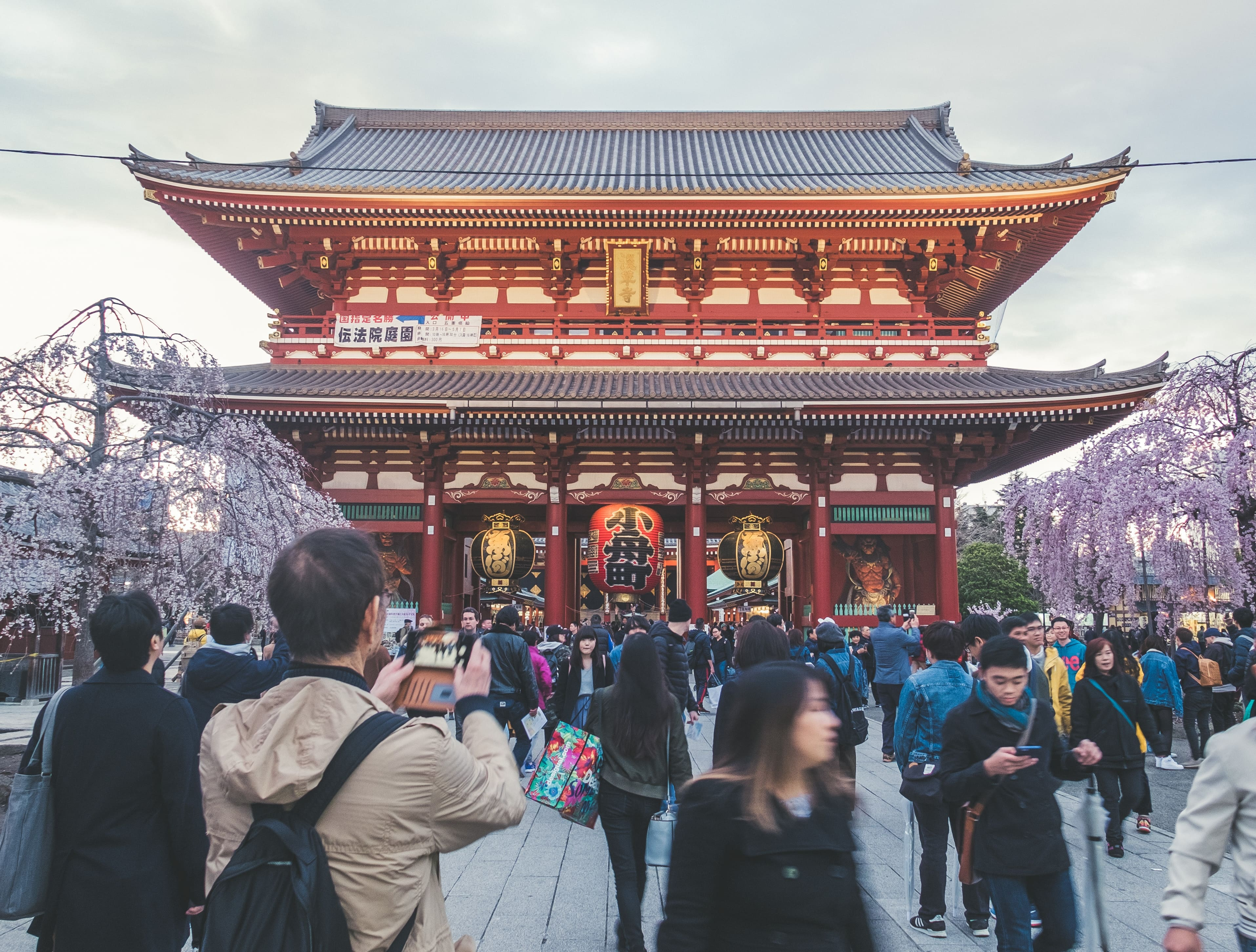 Unlike a Japan travel agency, a local will be available to help during your trip