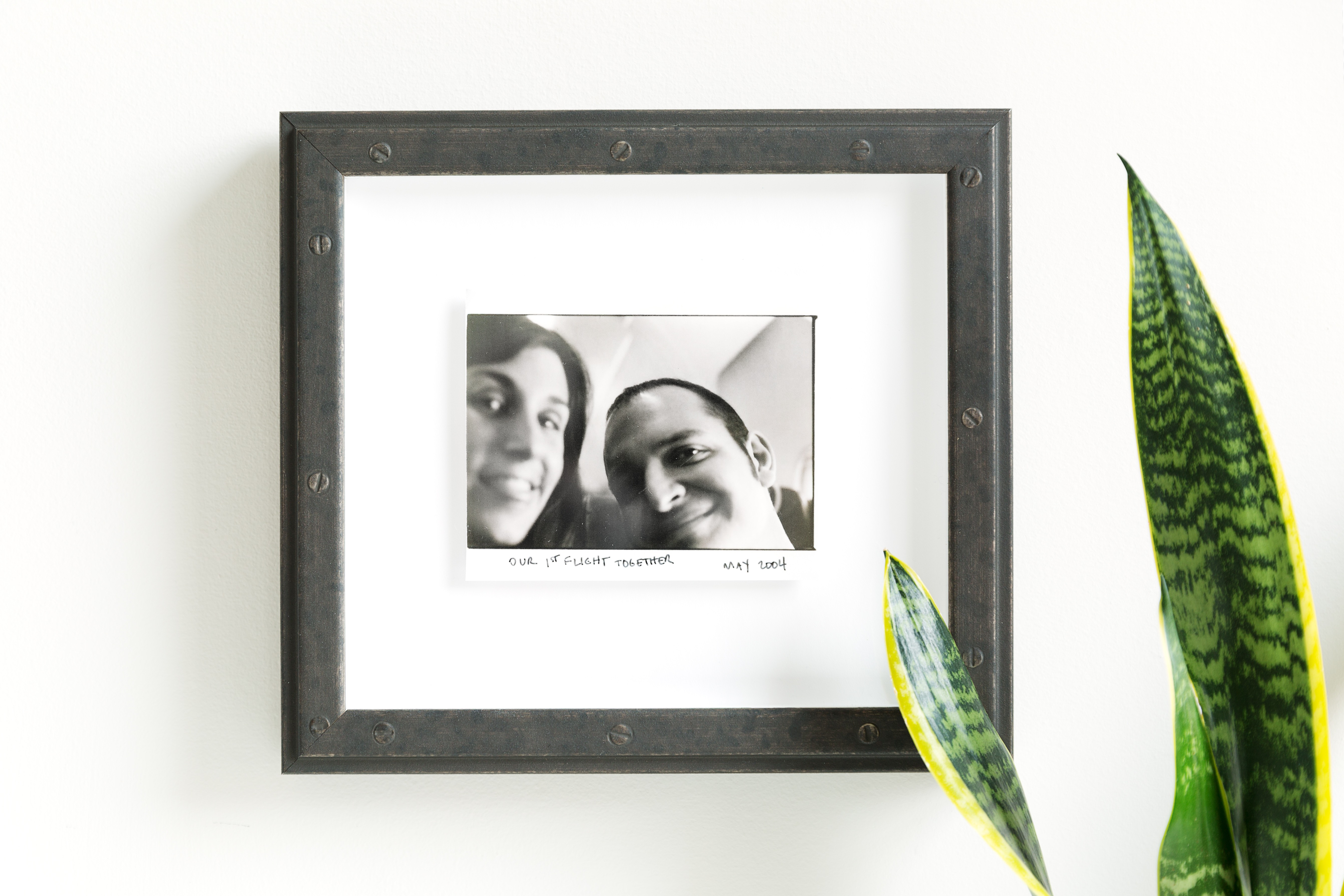 old photo of two people on a plane float mounted in a riveted steel frame on a white wall with a snake plant