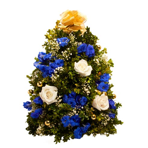 Blue flower mini live Christmas tree deliveries