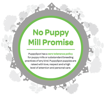 No Puppy Mill Promise