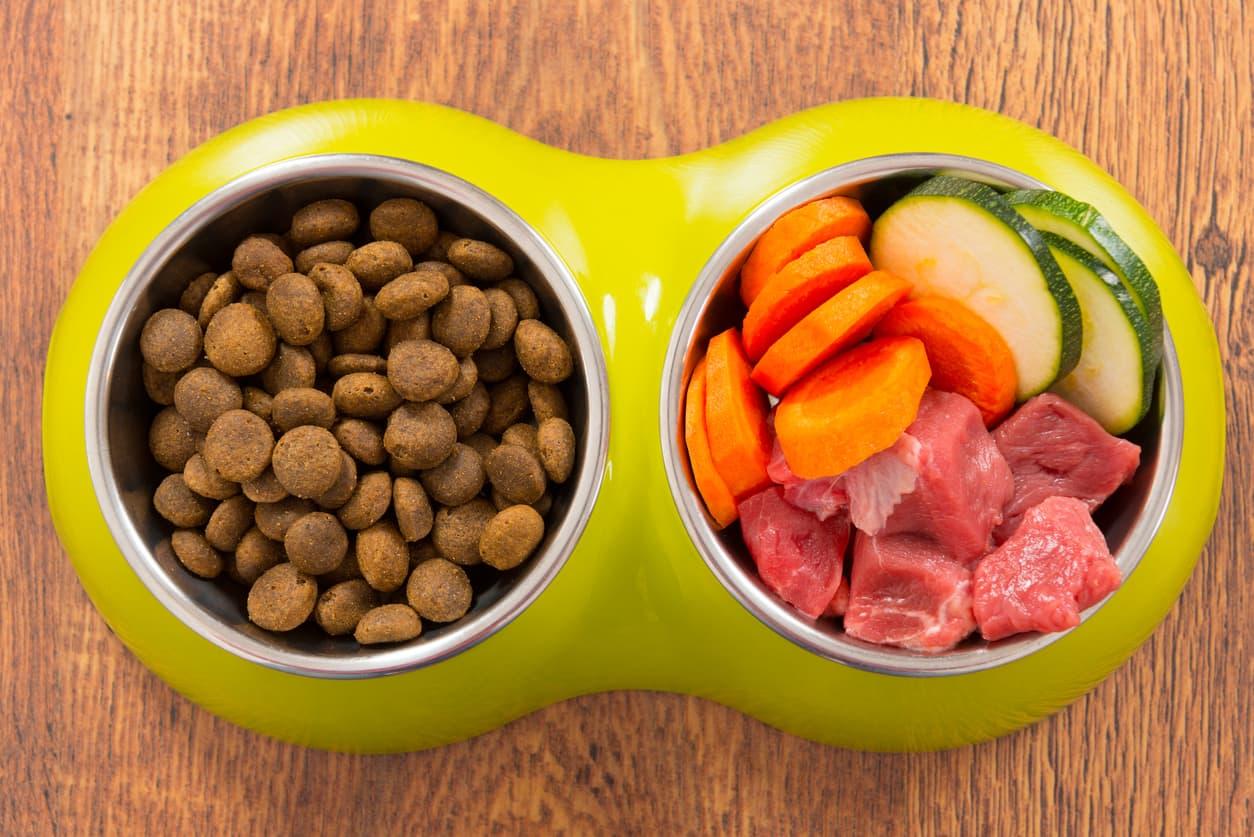 dog_food_nutrients.jpg