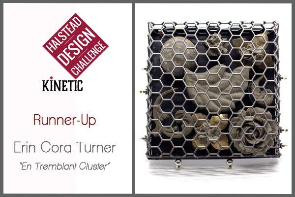 2016 HDC Runner Up Erin Cora Turner