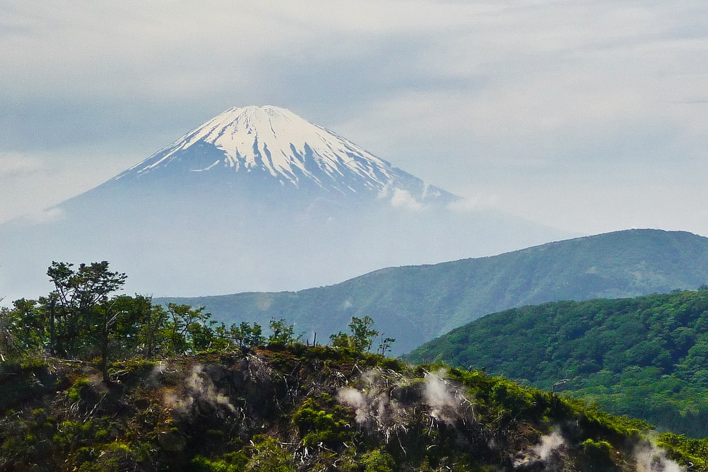 Seeing the Fuji-Hakone-Izu National Park is one of the things to do in Hakone