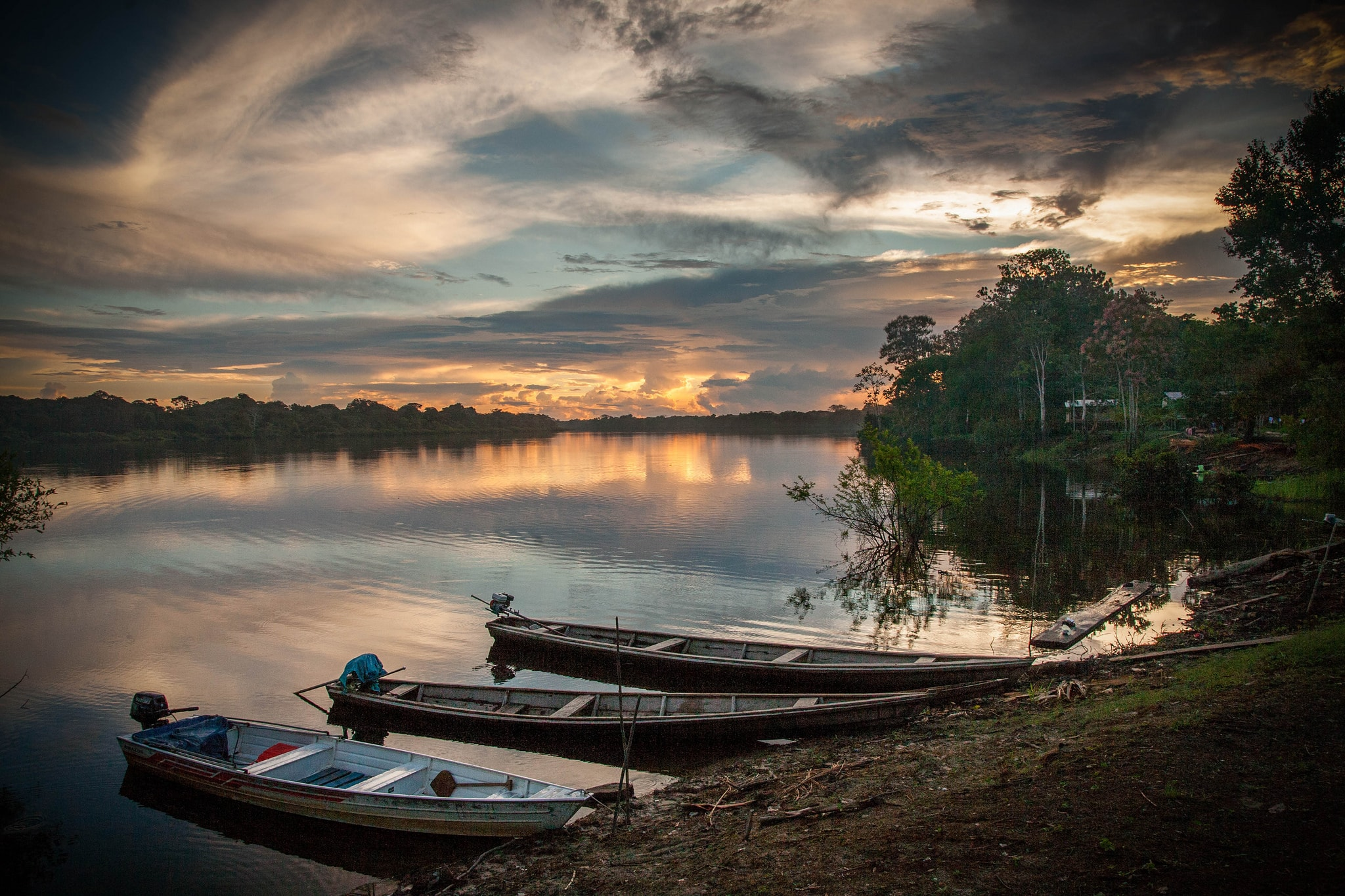 the amazon river rainforest things to do in Colombia