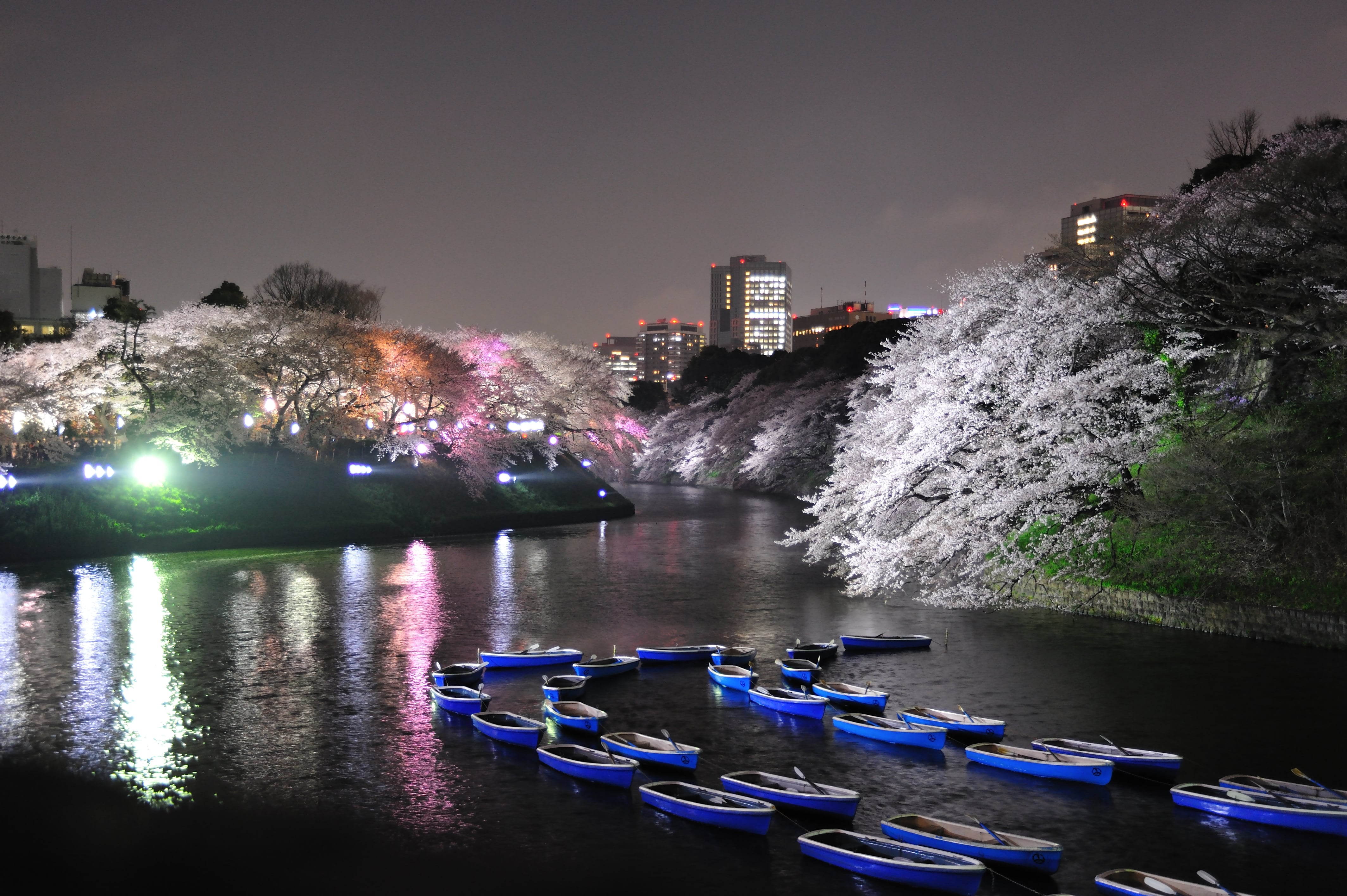 Your favorite season is the best time to visit Tokyo
