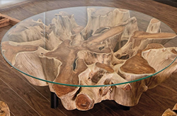tree-base-glass-coffee-table.png