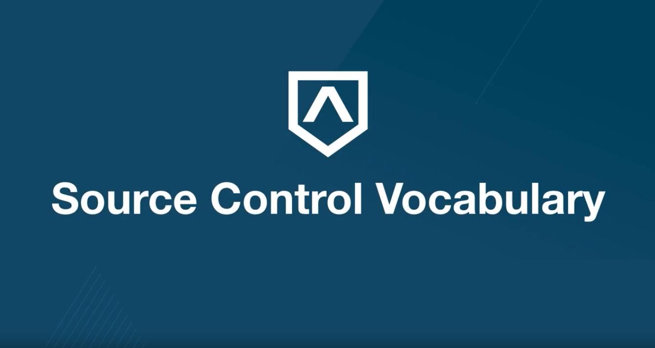 Version Control Vocabulary