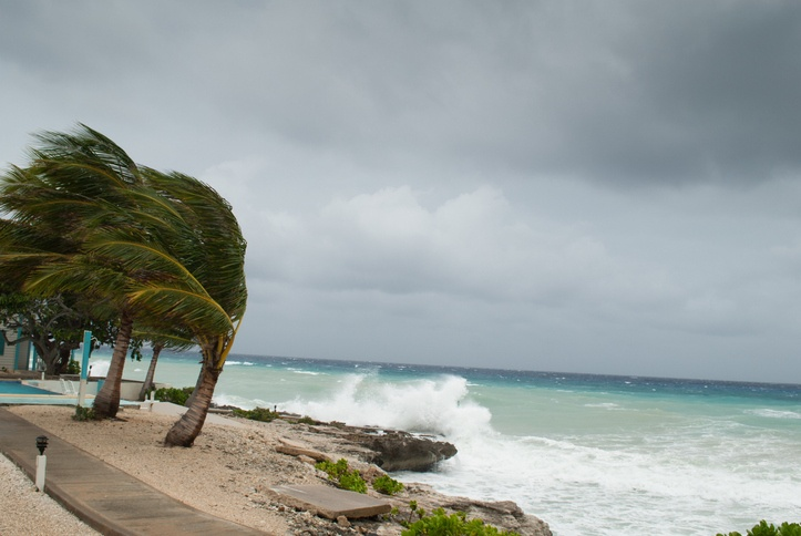 Image of Are You Ready for a Storm? How to Prepare for a Hurricane