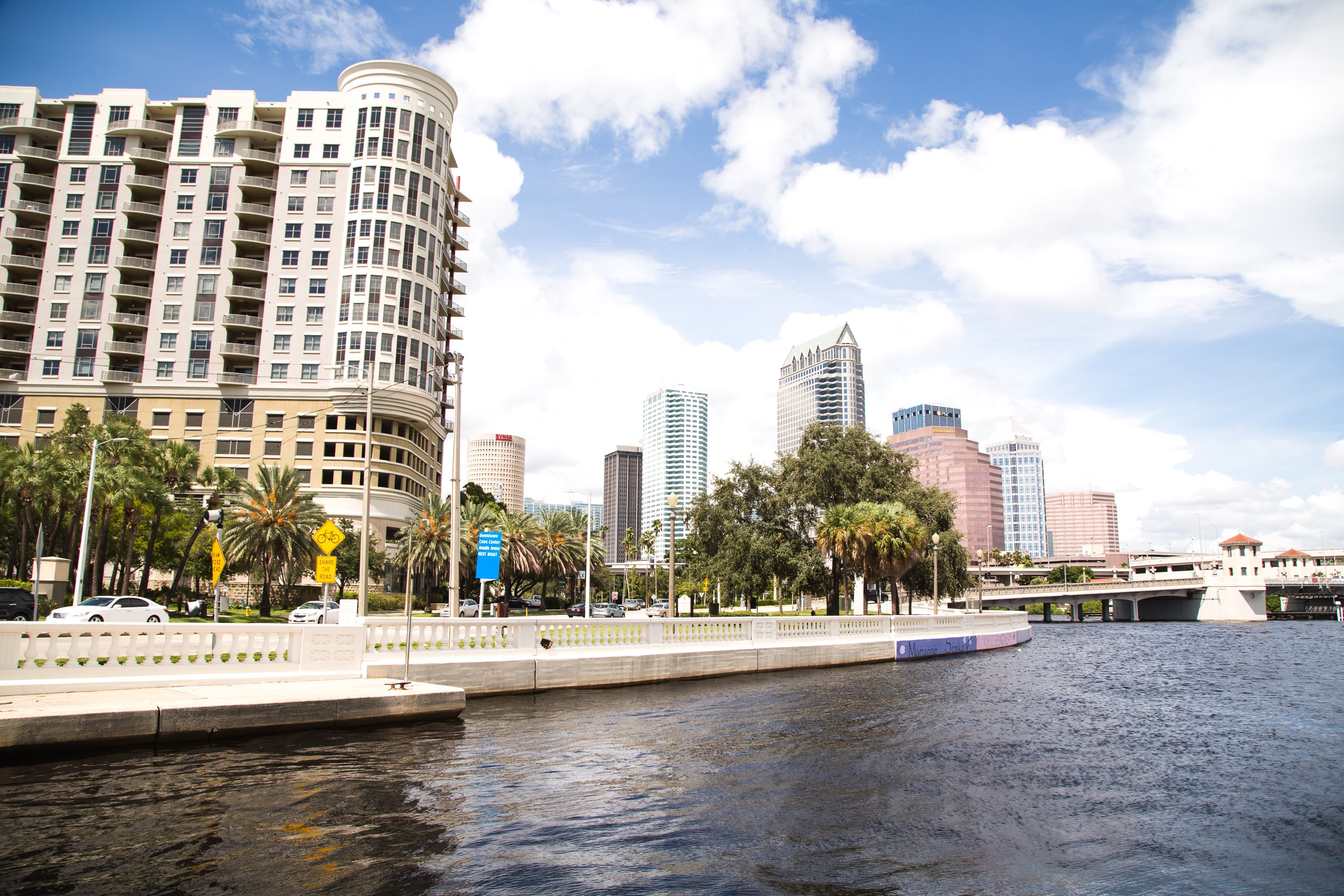Image of 10 Free Things To Do in Tampa Bay