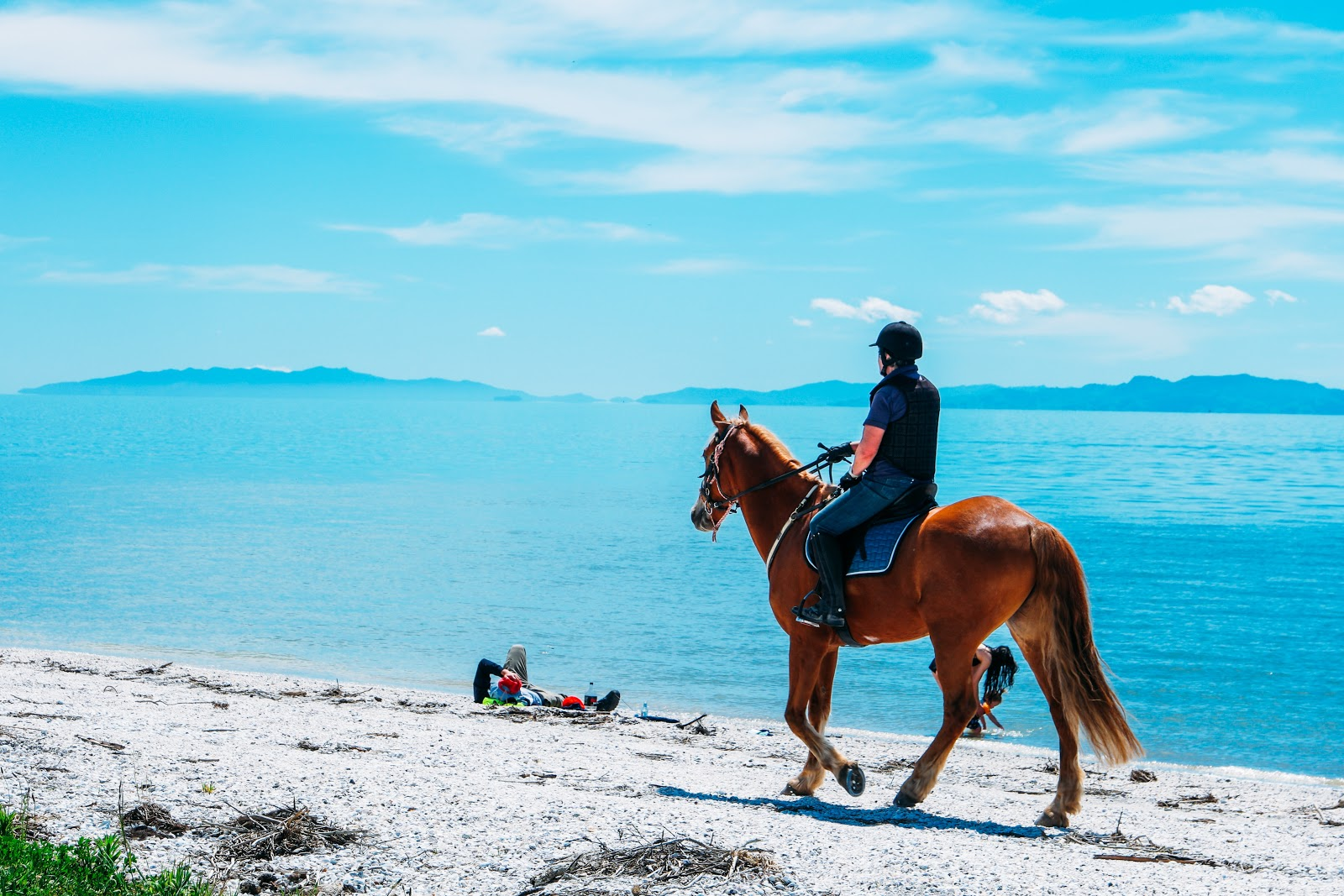 Swimming with horses on Vieques is one of the fun things to do in Puerto Rico