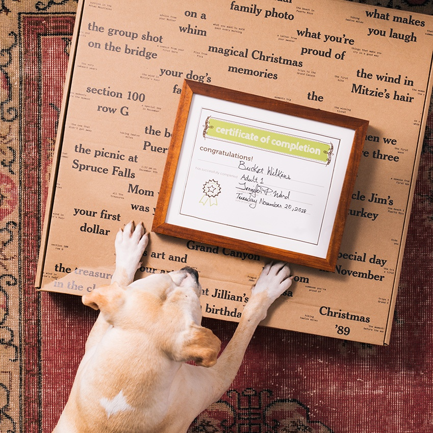 dog graduation diploma with box