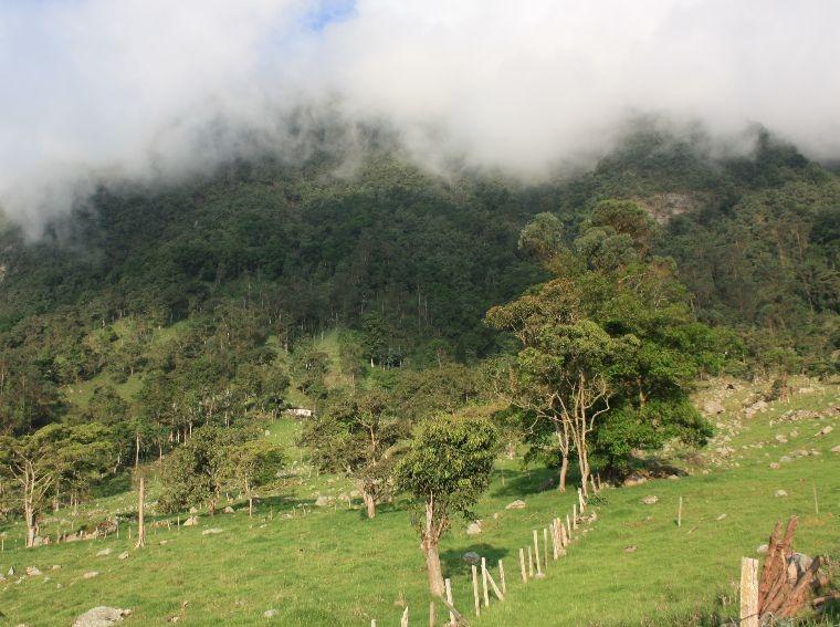 Chicaque Bogota Colombia