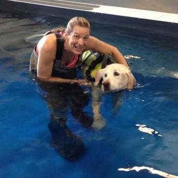 Swimming Therapy for the Dogs of Montana