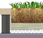 Sponge Roof (mineral wool / retention) green roof construction specfication with pavers