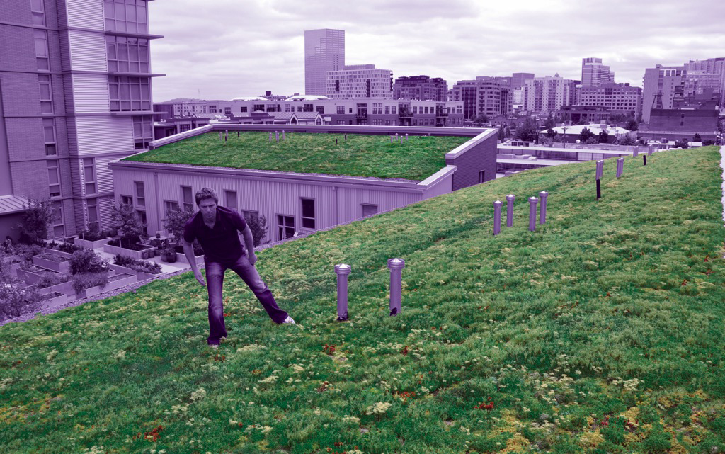 Purple-Roof is a non-proprietary green roof specification