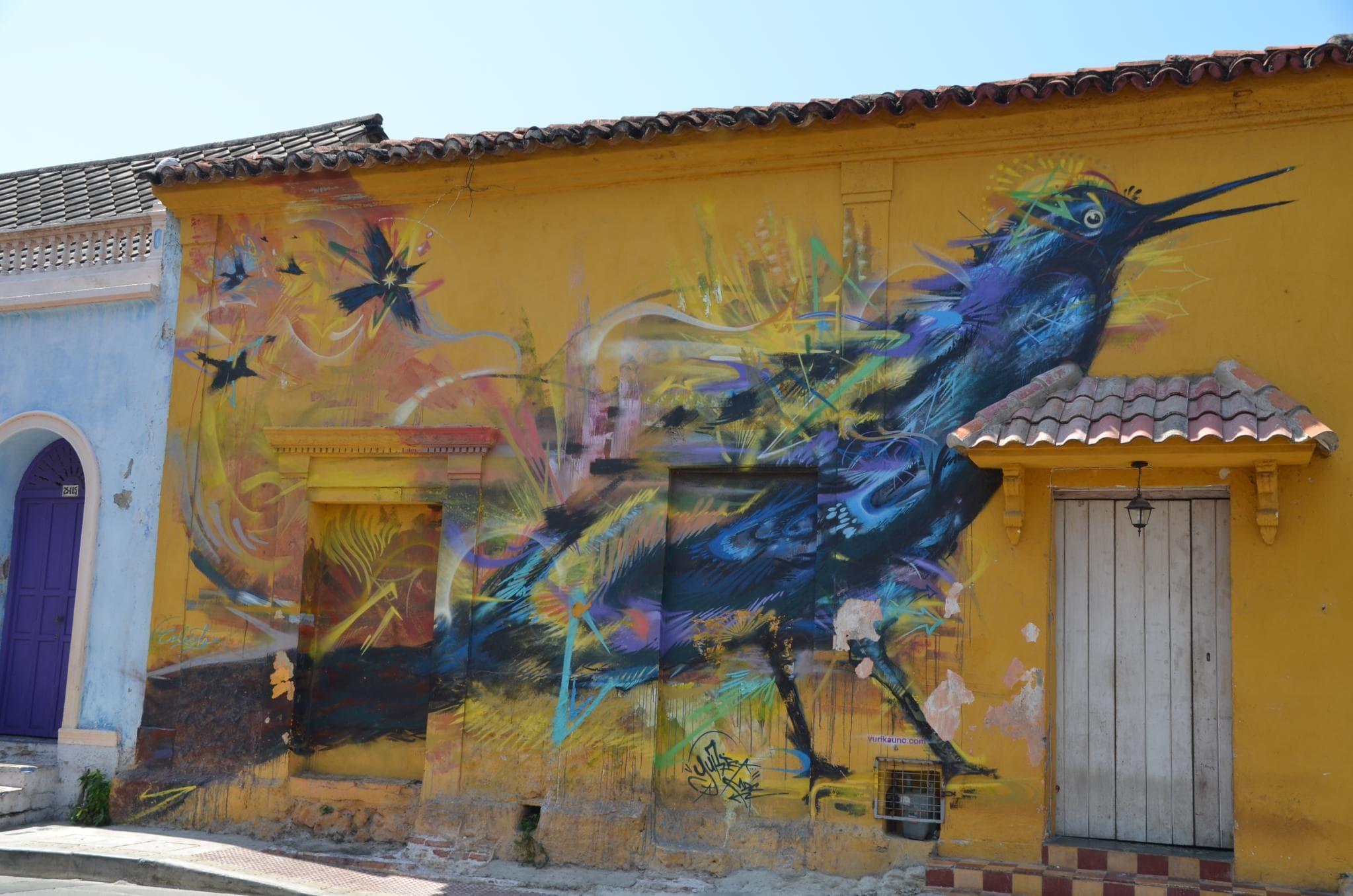 A tropical bird in Getsemani, Cartagena Colombia