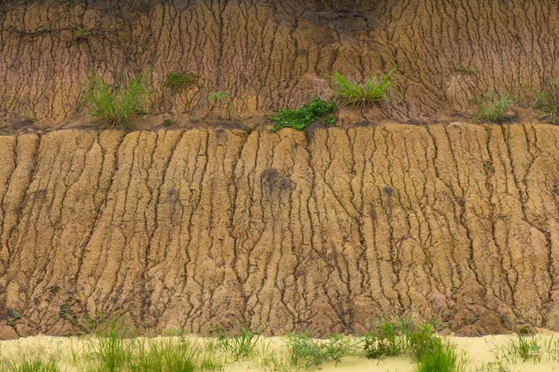 water-flow-in-soil-finger-formation