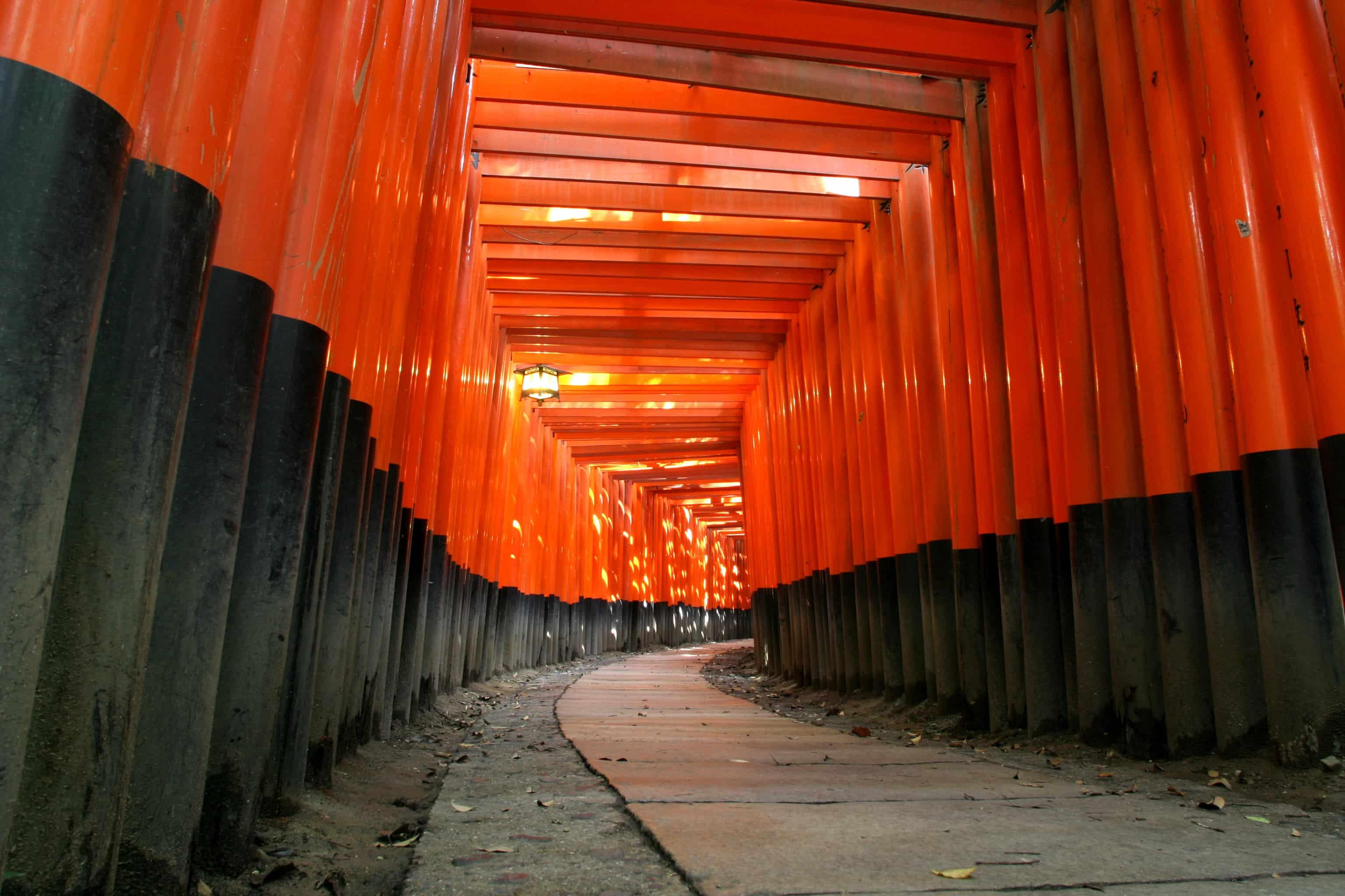 fushimi inari taisha where to go japan