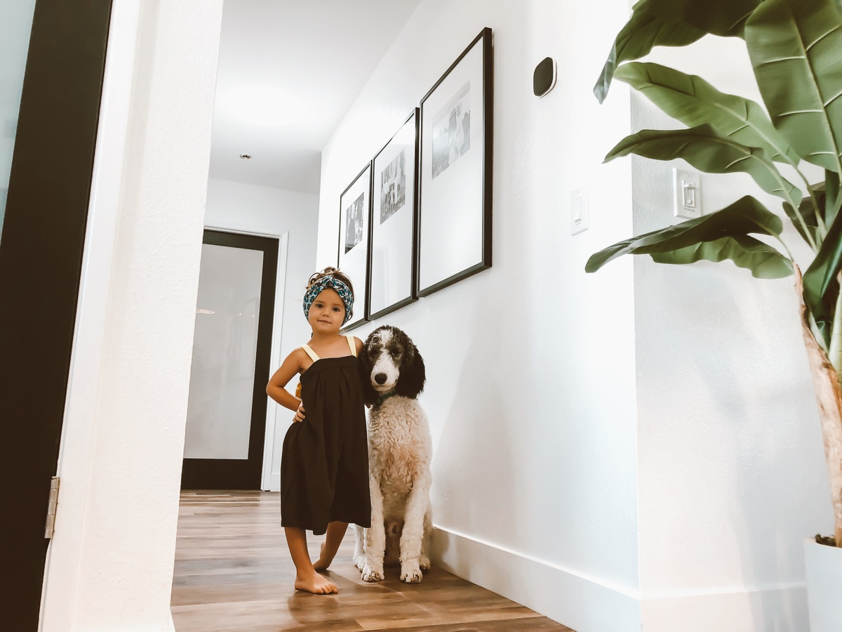 dog and girl posing in hallway of frames